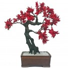 Artifical Bonsai Tree - 35cm Tall Approx