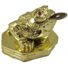 Golden Money Toad on Bagua Plinth - 8cm